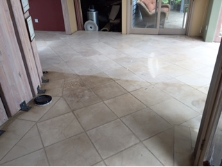 Select Floor Care (19)