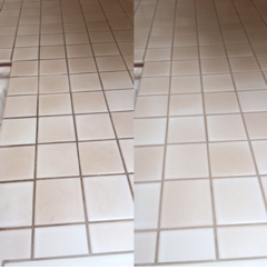 Select Floor Care (22)